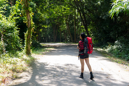Hiker asia woman standing on forest trail and looking away in vacations day. Female with backpack and camping on hike in nature. Travel Concept Banco de Imagens