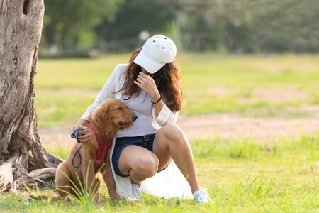 Asian lifestyle woman playing with golden retriever friendship dog in sunrise outdoor the summer park.
