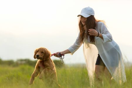 Asian lifestyle woman playing  with golden retriever friendship dog so happy and relax near the road in sunrise outdoor the summer park. Banco de Imagens