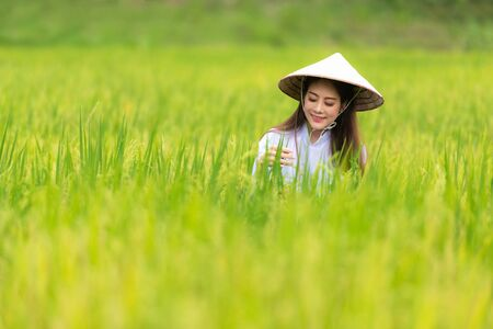 Asian beautiful women farmer harvesting green rice fields on terraced in Thailand.  Agriculture Concept