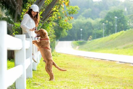 Asian lifestyle woman playing  with golden retriever friendship dog so happy and relax outdoor the summer park.
