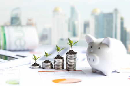 Piggy and the tree  growing on money coin stack for investment and saving,  business newspaper with financial report on desk of investor real estate business. Investment and saving Concept 写真素材