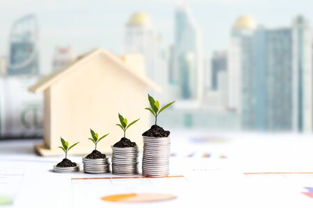 Investor of real estate.  The plants growing on money coin stack for investment home,  business newspaper with financial report on desk city background.  Investment property growth Concept
