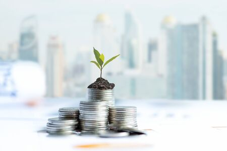 The tree  growing on money coin stack for investment,  business newspaper with financial report on desk of investor real estate business, city background.  Investment property growth Concept