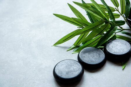 Green leaf nature aromatherapy  oil Spa with candle and stone spa. Thai Spa relax Treatments and massage concrete background. Healthy Concept. Copy space for text