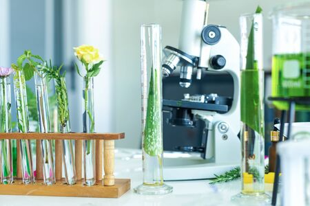 Science lab research with microscope for Natural aromatic and essential oil from fresh flower of for new product skin care in laboratory.  Healthy  Natural herb Concept Stock Photo