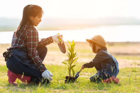 Asian  kid daughter helping mother water and sapling  the plant tree outdoors in nature spring for reduce global warming growth feature and take care nature earth.  Environment Concept Stock Photo