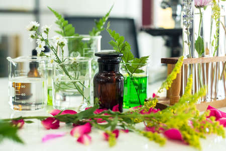 Science lab research with microscope for Natural aromatic and essential oil from fresh flower of for new product skin care in laboratory.  Healthy  Natural herb Concept Stok Fotoğraf