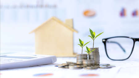 Investor of real estate. The plants growing on money coin stack for investment home green nature background. Investment mortgage fund finance and interest rate home loan. Investment Concept