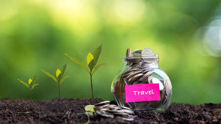 Plant growing in Coins glass jar on dry for travel  together and success.  Saving paper label for money planning future travel. Green nature background