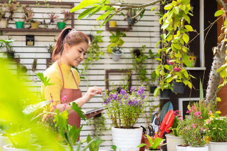 Woman receipt order customer and sale plant flower online on laptop in garden. People hobby and freelance gardening indoor at home, nature garden background. Happy and enjoy in spring and summer day. Lifestyle Concept