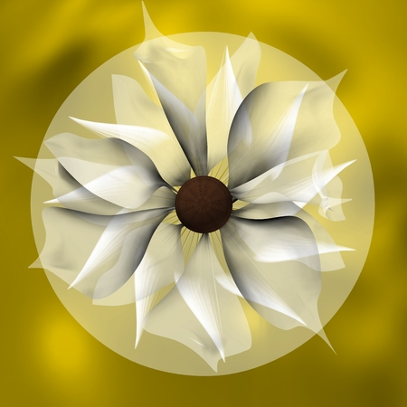 SHADED FLOWER AND TRAPPED IN A YELLOW CIRCLE