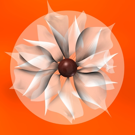 SHADED FLOWER AND TRAPPED IN A CIRCLE ORANGE