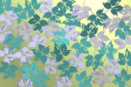 Blue leaves over bright background. Stok Fotoğraf