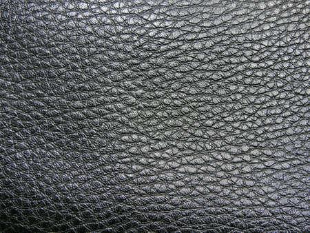 monotone: Monotone texture in cold colors of the leather.