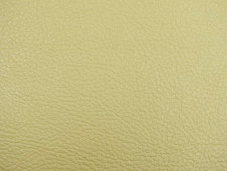 leathern: Monotone texture in cold colors of the leather.