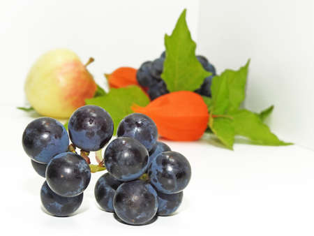 concord grape: Colorful still life with apple, concord black grapes and physalis flower on white background