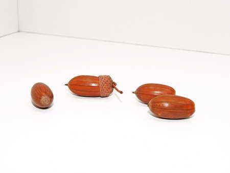 fagaceae: Four ripe acorns isolated on white background