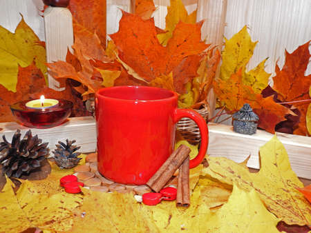 Autumn composition, cup of red tea on a background of autumn