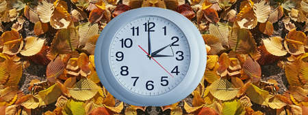 goes: Isolated electronic wall clock. Goes to Winter time