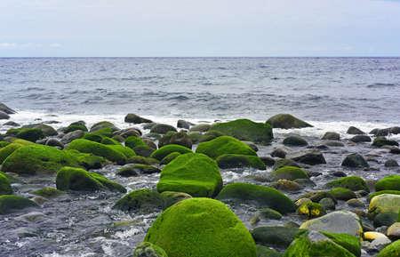 Group of stones near Atlantic ocean coast. On Summer cloudy day.