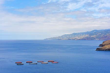 Fish farming in Atlantic Ocean. Sunny summer day