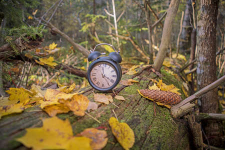 Vintage black alarm clock on autumn leaves. Time change abstract photo. Daylight saving time. 免版税图像
