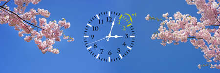Wall Clock with blue skies and flowers Stock Photo - 118473707