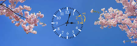 Wall Clock with blue skies and flowers Stock Photo - 118473710