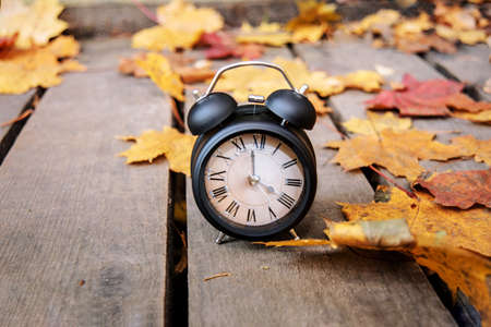 Vintage black alarm clock on autumn leaves. Time change abstract photo. Daylight saving time. Stock Photo
