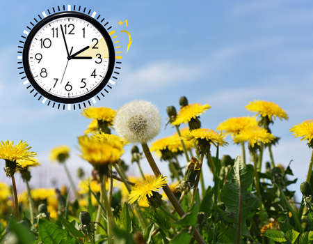 Summer Daylight Saving Time (DST). Blue sky with yellow dandelions. Turn time forward (+1h).