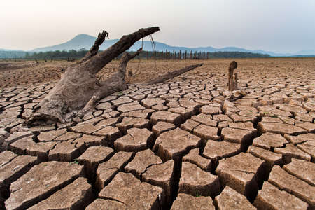 Cracked dry land without water.Abstract background. Standard-Bild