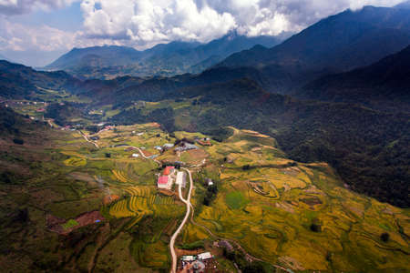 patchwork: Rice fields at Northwest Vietnam