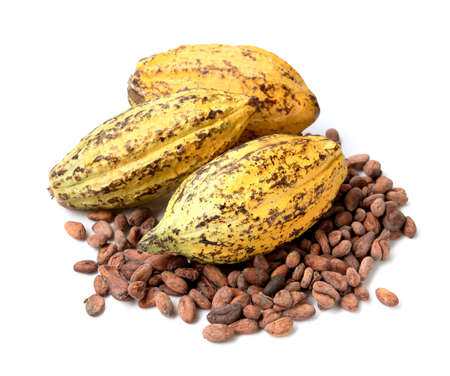 Cacao fruit, raw cacao beans, Cocoa pod on white background Archivio Fotografico