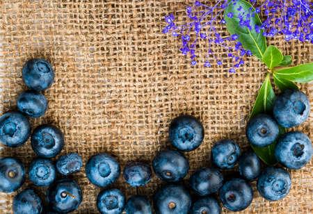 fresh blueberries 写真素材