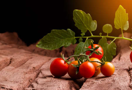 Tomatos in wooden plate on black background