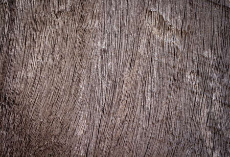 wood texture. background old panels