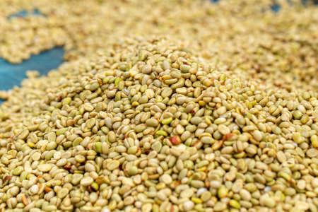 natural organic green coffee beans