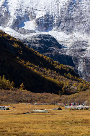 Colorful in autumn forest and snow mountain at Yading nature reserve, The last Shangri la