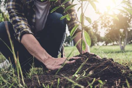 Hombre joven que planta el árbol mientras que riega un árbol que trabaja en el jardín como concepto, naturaleza, ambiente y ecología del mundo de la reserva.