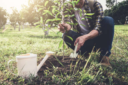Young man planting the tree while Watering a tree working in the garden as save world concept, nature, environment and ecology. 版權商用圖片