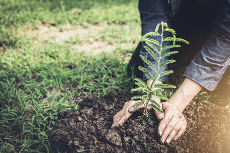 Young man planting the tree in the garden as earth day and save world concept, nature, environment and ecology. Фото со стока