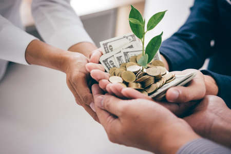 Hands of business team holding plant sprouting growing from golden coins and banknotes, business investment and strategy concept.