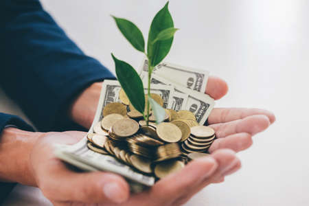 Hands of businessman holding with plant sprouting growing from a handful of golden coins and banknotes, business investment and strategy concept. Stock Photo