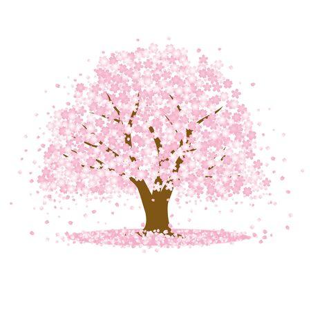 Le décor où la fleur s'épanouit dans le cerisier