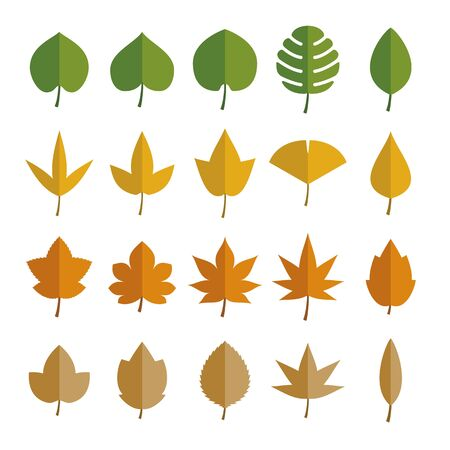 Spring, Summer, Autumn and Winter Leaves