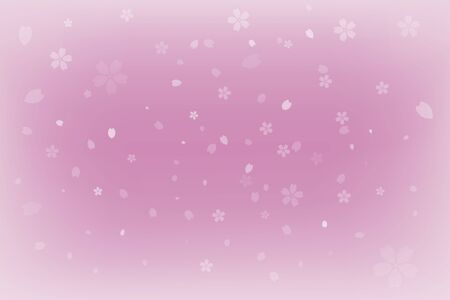 Pink background with cherry blossom petals