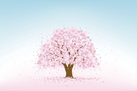 Cherry tree with falling petals
