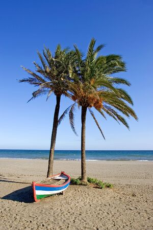 sol: Colourful rowing boat and palm trees on sandy beach on the Costa del Sol in Spain Stock Photo