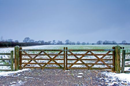 cud: Wooden gate next to a wintery field on a farm with black sheep and a dark sky